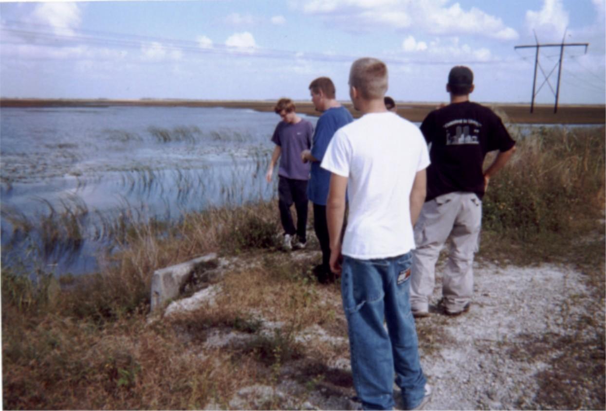 The Everglades.