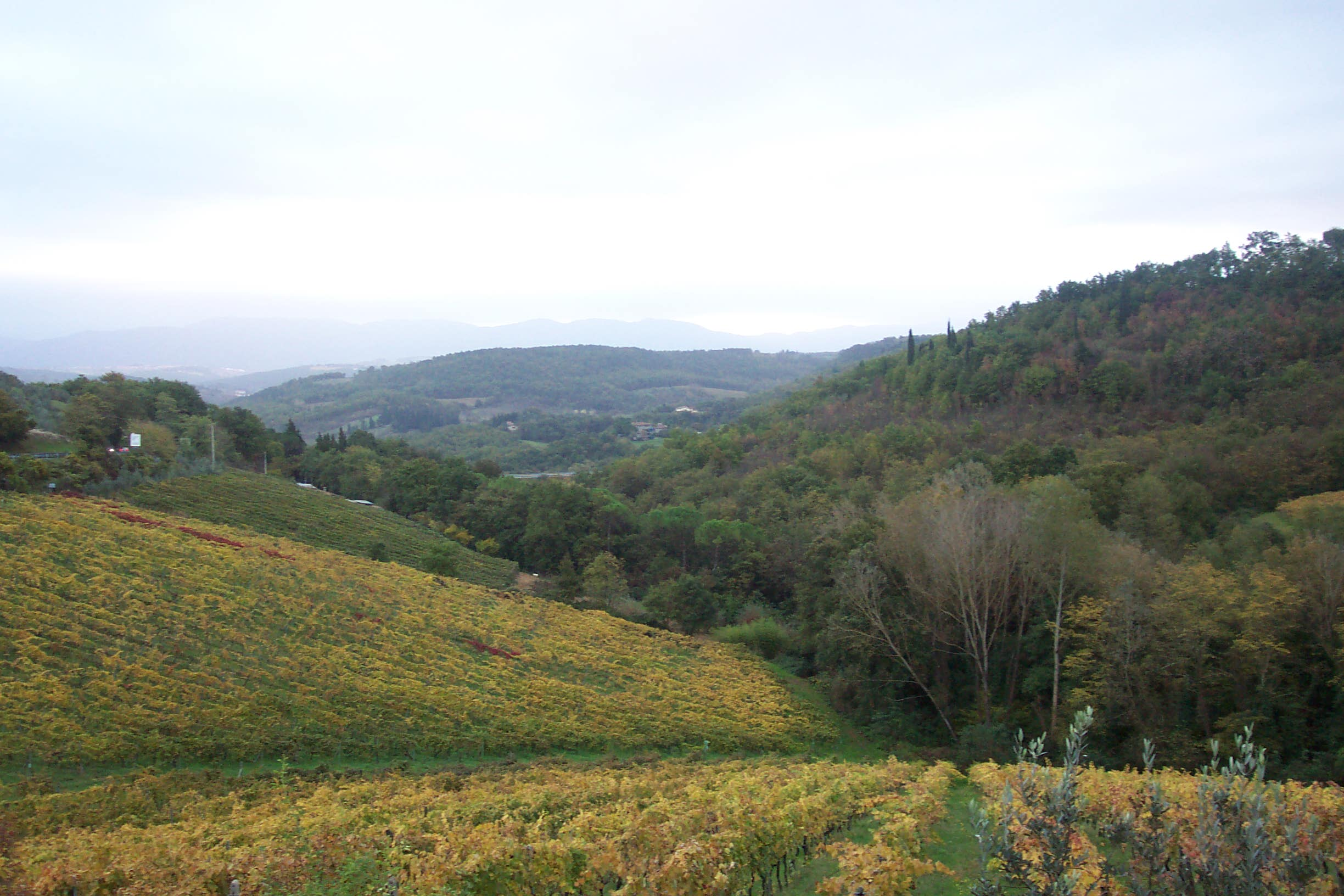 Link to biking in Tuscany